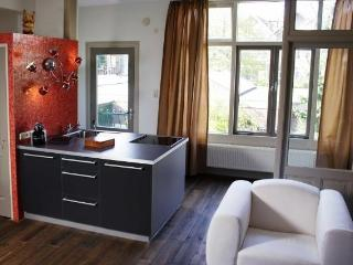 Short Stay Apartment Dependance Rotterdam