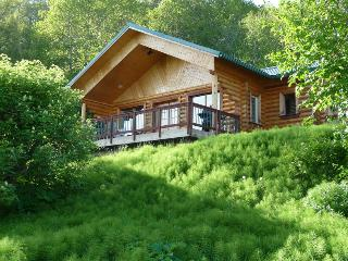 Twin Puffins: 2 BDRM Secluded Cabin w/Great Views, Homer