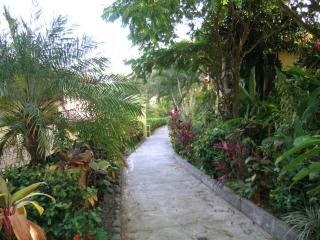 Chaman Pathway to swimming pool