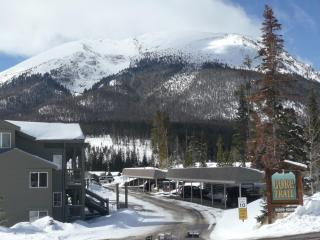 Premium Mountain Retreat near 5 ski resorts, Silverthorne