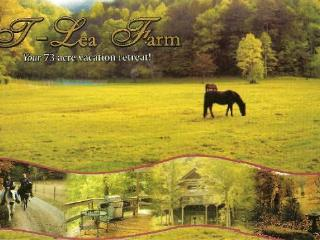 T Lea Farm, Tellico Plains