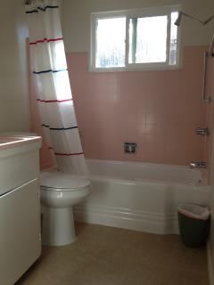 Bath in #4 (Deluxe One Bedroom)