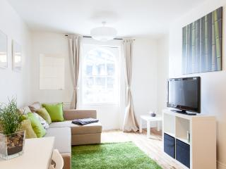 Spacious 1-bed Apt. in Camden Town: central, clean, free WIFI (sleeps 4-5)