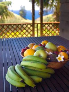 Hunky's Homestead - Fresh Fruit from the Property for Guests