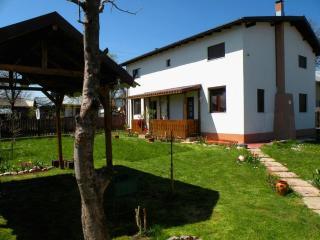 Casa Lavanda - Holiday house near Prahova Valley, Campina