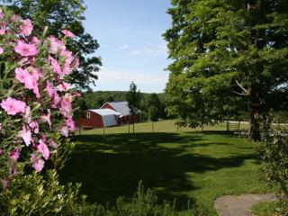 The front yard looking toward the barn.