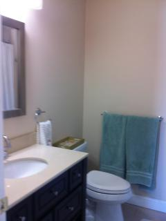 Master bath with full size tub and shower