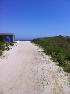 Beautiful path to beach