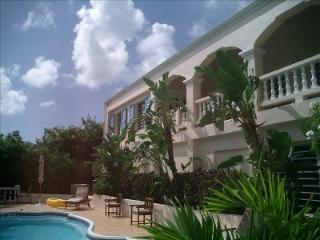 Private pool and balcony at Paradise Point, St. Croix