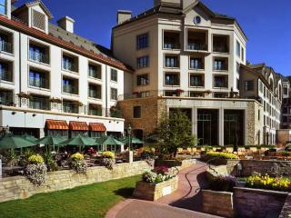Beaver Creek ultra luxury apartment rental