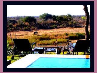 Hippo Hills - Kruger National Park Boundary, Komatipoort