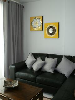 leather couch, living area