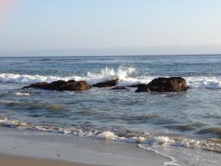 Malibu Condo, on beach to dive, surf, sun, & play.