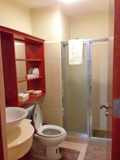 Recent photo: Toilet & Bath with hot/cold shower & heater