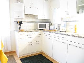 Lovely apartment in Zurich for 1-3 persons, Zúrich