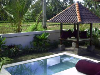 Private Plunge Pool with Gazebo