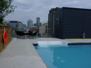 New fully-furnished apt for rent downtown Montreal