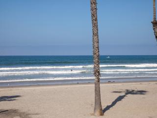 Pelican's Paradise, Oceanside