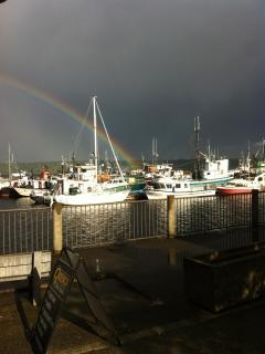 View of Pier harbor