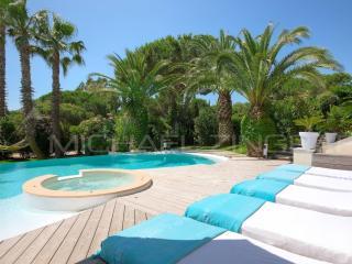 Luxurious villa sea view swimming pool near beach