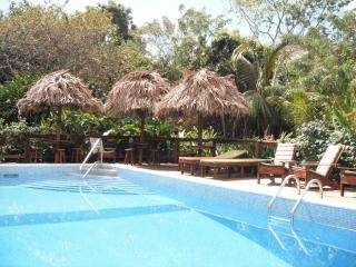 Guava Grove Villas. Home and kitchenette studios in tourist zone with huge pool, Sandy Bay