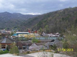 #201 Gatlinburg Chateau - 2 Bedroom Condo