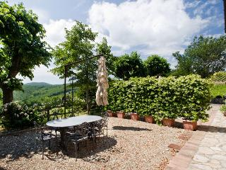 Filigrano Nuovo - Viola, San Donato in Poggio