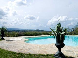 Villa Olivo - Mahonia