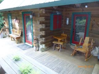 Canoe Cabin * Hot Tub * In Law Suite *, Ellijay