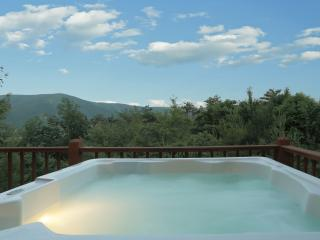 Spectacular 'Oh Wow' Mt Views! Secluded, Swim pool access, Game room, WiFi, Fire