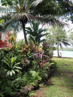Side garden - left