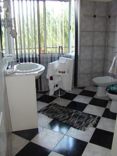 Bathroom (shower, whb, bidet and toilet)