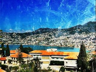 Fully furnished Flat for rent,Sarba,Kaslik,Jounieh