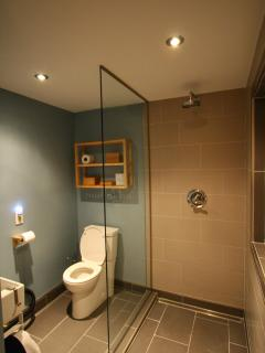 renovated bath with rain shower