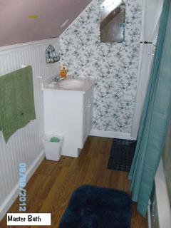 Master Bath-Tub and Shower