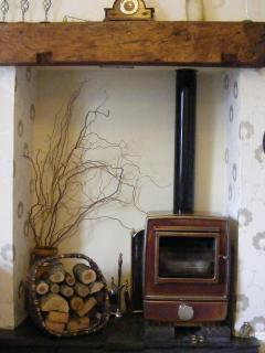 Wood Log Burner