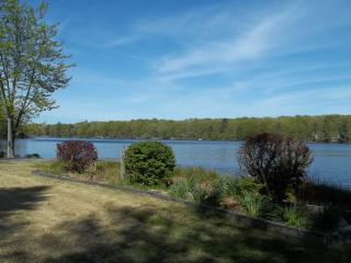 View of the lake from the backyard.