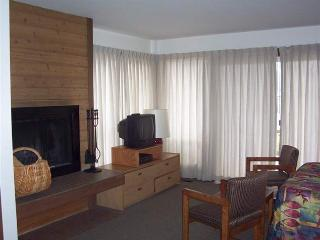 Living room w/ wood burning fireplace