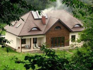 Carpathian Nest