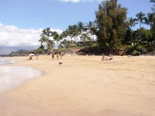 Hale Ili Ili #D Oceanfront  on Kamaole Beach 1 Steps from the beach! Sleeps 4, Kihei
