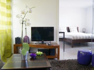 Superb Cannes 1 Bedroom Apartment with Air Conditioning - Renovated 2013