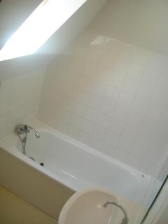 French bathtub with hand-held showerhead