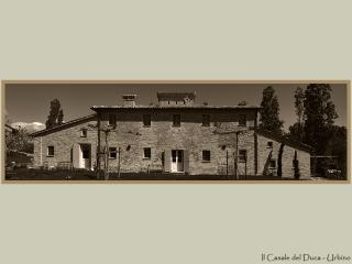 Il Casale del Duca, Urbino