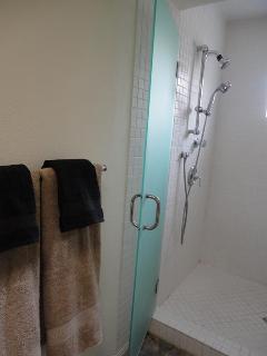 Large walk-in shower w/dual sprays
