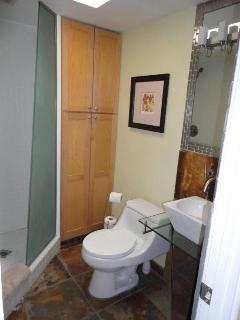 Guest/Hall Bath