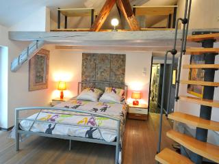 The MORELLS in the heart of Alsace - for 4 to 6 people, Erstein