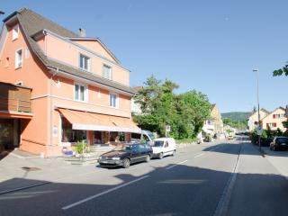 Chez Svanette Bio B&B with 7 cozy living-bed rooms, Dornach