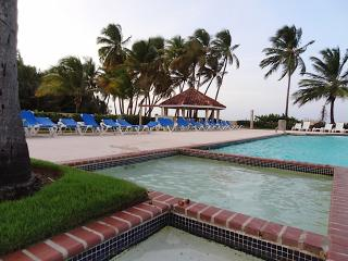 Pool area next to Ocean- walking distance