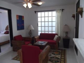 Oasis Cozumel Apartment - Vacation & Ironman Ready