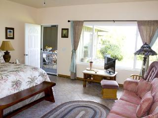 king sized bed in a beautiful decorated bedroom with tv and pullout coach
